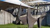 49. St.Gallen Symposium: Angebote für die Öffentlichkeit